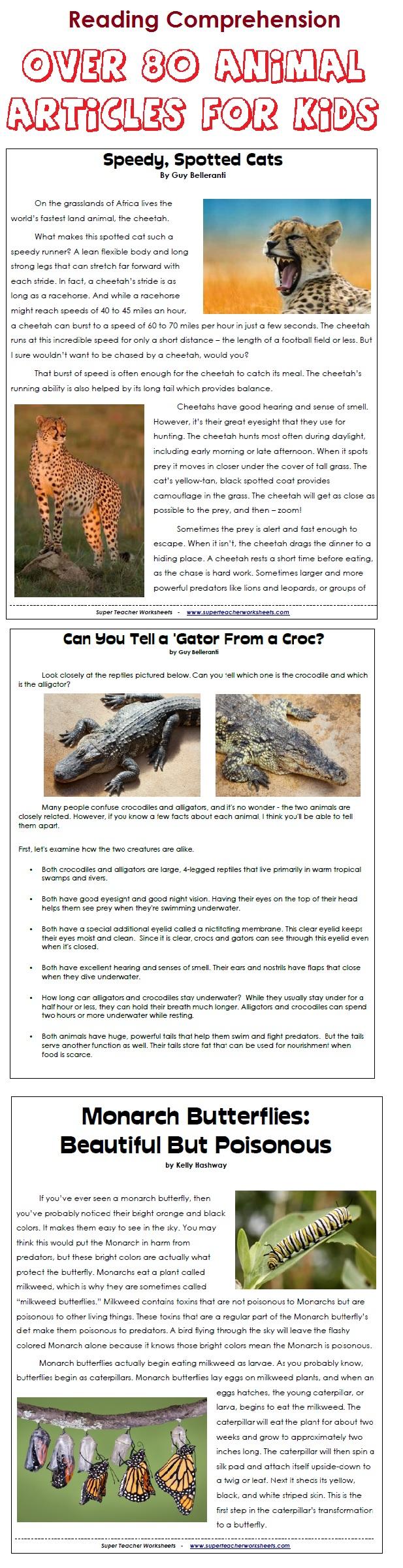 Uncategorized Super Teacher Worksheets Reading Comprehension animal articles for kids