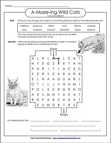 A-Maze-ing Wild Cats