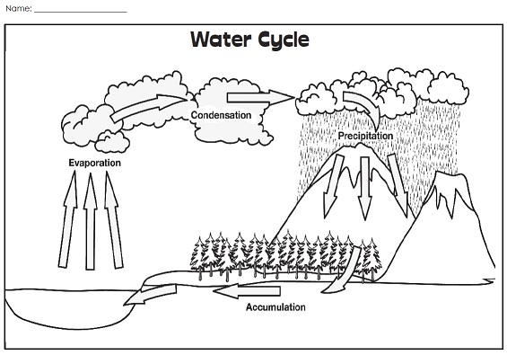 Worksheets The Water Cycle Worksheets a water cycle illustration picture