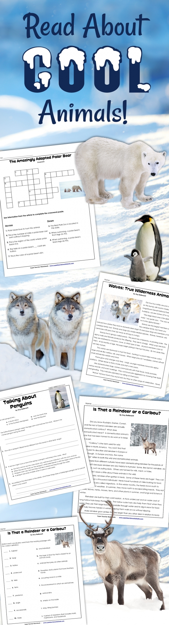 Winter Animal Articles