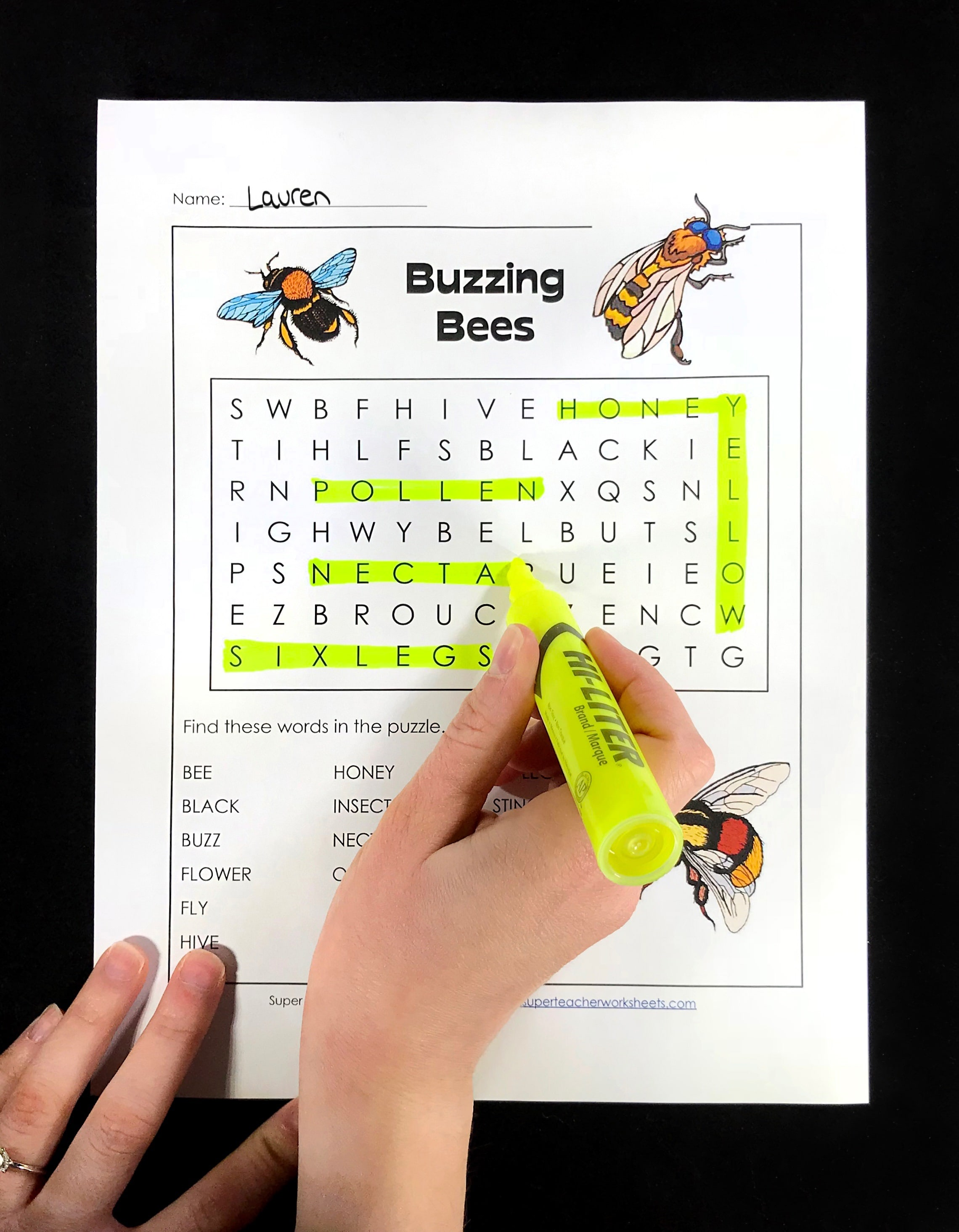 Word Search Activity