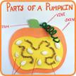 Classroom Pumpkin Activities
