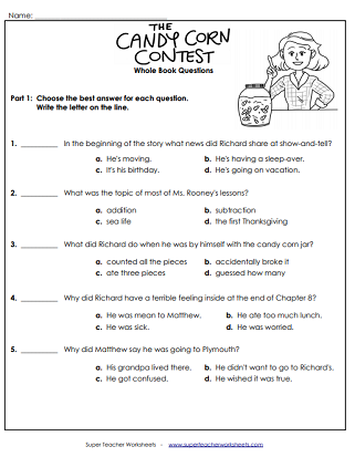 Chapter Book Unit Worksheets