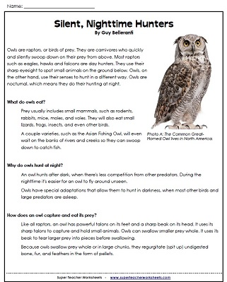 Printables Super Teacher Worksheets Reading owls and owl pellet worksheets reading worksheet